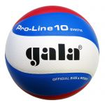 Gala Proline GA5171S10 Volleybal