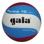 Gala Pro Line GA5571S10 Volleybal