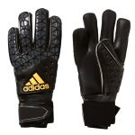 Adidas Ace Pro Classic Keepershandschoenen AP5790