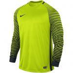 Nike Gardien Keepersshirt Lange Mouw Volt-Zwart 725882 702